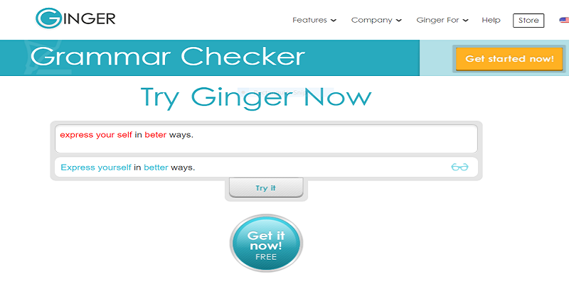 Picture of Ginger grammar and punctuation checker