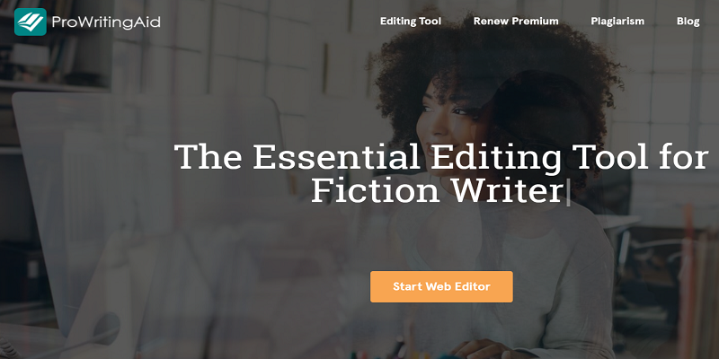 Picture of ProWritingAid Editing Tool